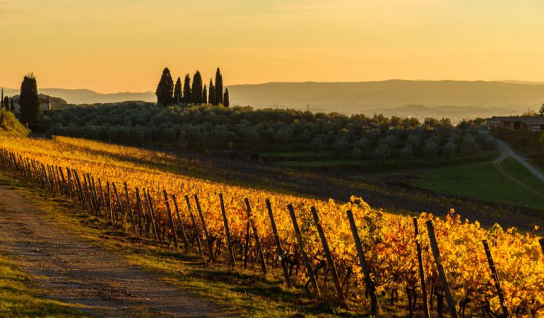 Florence countryside tour: ideas for a day trip