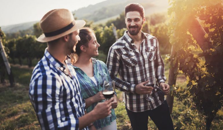Tuscany Wine Tours: for All Levels