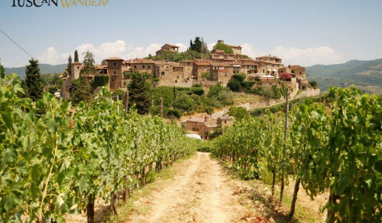 Montefioralle lays among vineyards under the Tuscan sun