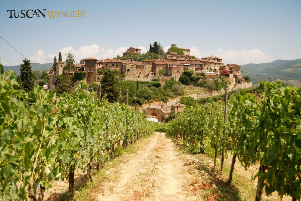 View of Montefioralle in a sunny day from vineyards surrounding it