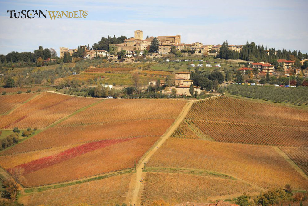 A view of Panzano in Chianti from outside the city