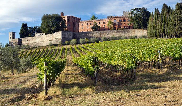 Castello di Brolio vineyards made the history of Tuscan wines