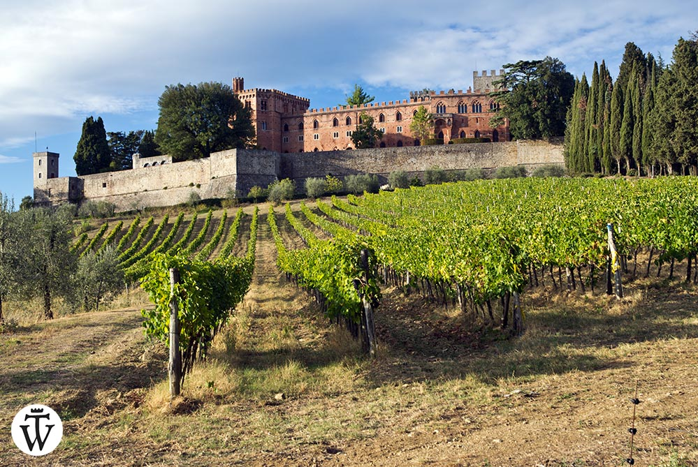 The Castello di Brolio seen from a distance with vineyards and cypress trees - featured image