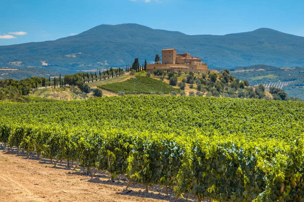 Castles on top of rolling hills, surrounded by vineyards: a perfect destination for a wine tasting trip