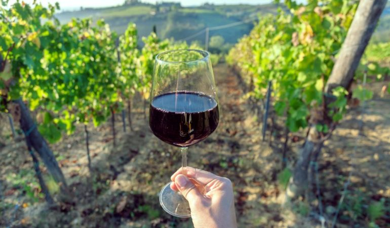 Wine Tasting in Tuscany Without a Car